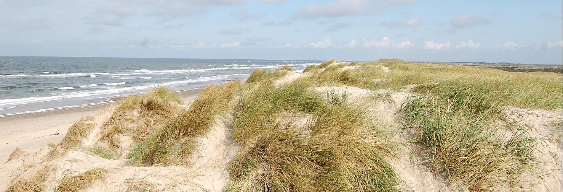 westjuetland nordsee strand duenen
