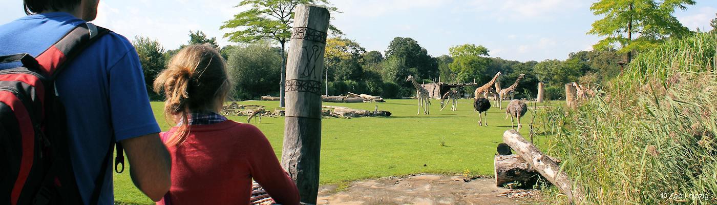 zoo leipzig ferienwohnung ferienhaus mieten