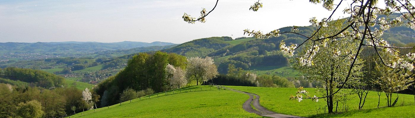 odenwald berge urlaub