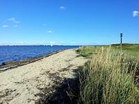 langballigau strand ostsee