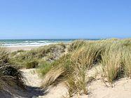 strandurlaub daenemark nordsee