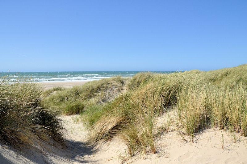 Strandurlaub ferienwohnungen ferienh user am strand for Ferienunterkunft nordsee