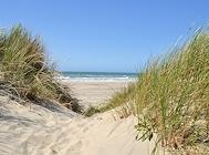 westjuetland duenen strand