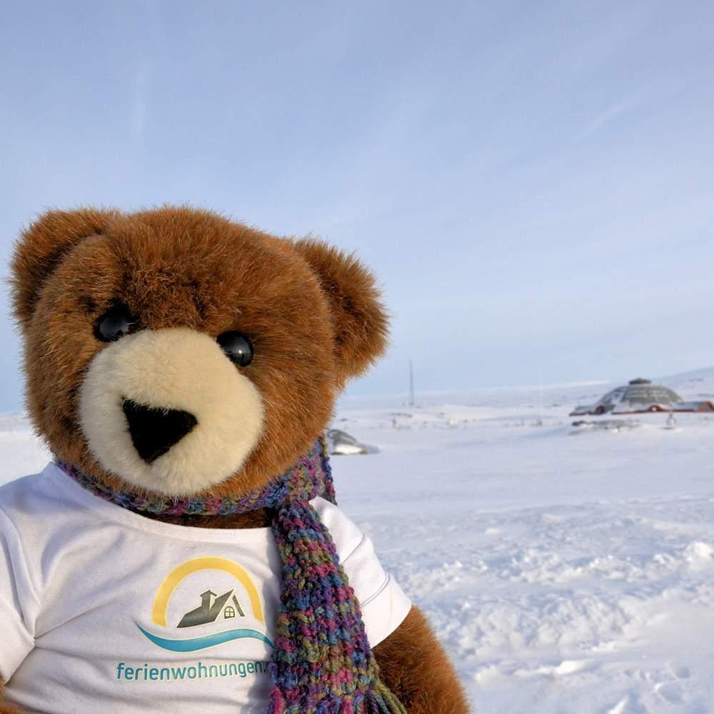 Von der (erfolglosen) Jagd nach Polarlichtern